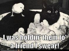 I was holdin' them fo' a friend I swear!