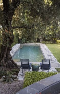 Small Backyard Pools, Small Pools, Small Patio, Outdoor Pool, Kleiner Pool Design, Natural Swimming Pools, Natural Pools, Pool Landscape Design, Small Pool Design