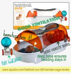 The Habitrail Ovo Loft is the perfect modular set-up for your hamster. Let your creative side loose by customizing the Ovo Loft with acessories and more! Baby Hamster, Hamster Care, Hamster Toys, Hamsters, Hamster Stuff, Cute Small Animals, Small Animal Cage, Mouse Cage, Hamster Habitat