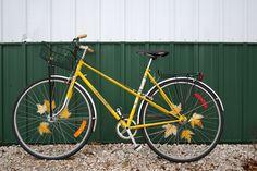 6 Badass Bicycle Spoke Cards