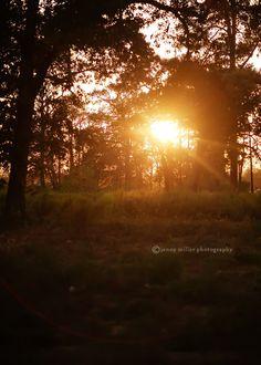 Love watching a beautiful sunset.  :)
