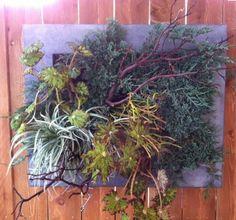 green-living-walls-installer-company-63