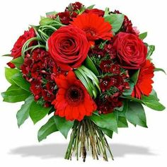 good night image for whatsapp - Wallpapers.Wishes. Christmas Flowers, Christmas Wreaths, Bouquet Saint Valentin, Good Night Honey, Red Flower Arrangements, Good Night Flowers, Good Night Love Images, Good Night Friends, Special Flowers