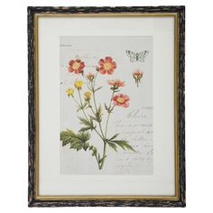 Taking inspiration from botanists'  journals, this framed and matted print lends antique appeal to your decor.     Product: F...