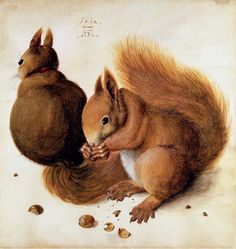 Albrecht Dürer 'Two squirrels' (modified) 1492 watercolor by Plum leaves (in), via Flickr