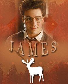 James Potter - The Marauders