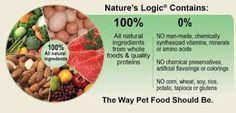 Resultado de imagem para natural food for dogs