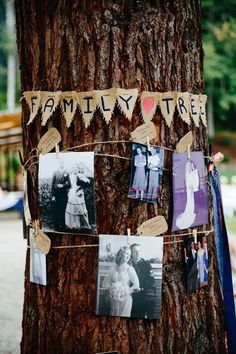 rustic family tree wedding decor