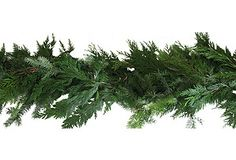 6' Holiday Cedar Garland, Dried
