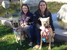 AVMA staff Victoria Broehm (left) and Dr. Elise Ackley, with dogs Bula and Voodoo, respectively, participated in a one-mile walk around the nation's capital to raise awareness about Step It Up!, the surgeon general's initiative to promote walking. It's great exercise for both people and pets!