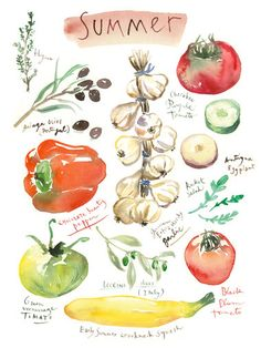 Kitchen art Summer vegetable poster Botanical by lucileskitchen