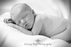 Baby...Chrissy Noel Photography