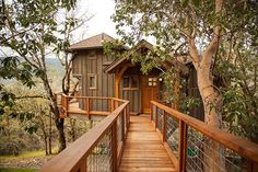 Treehouse Masters Cool Tree Houses Woodland House