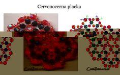 Cervenocerna placka.jpg