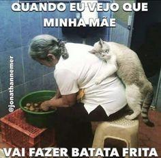 #amorincondicional #filhode4patas #maedepet #gato #petmeupet #petshop
