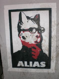 intelectual cat - Berlin