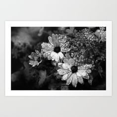 http://society6.com/MaBoe/After-the-rain-2-Q0L_Print  After the rain 2 Art Print  - $18.00