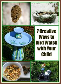 7 Creative Ways to Invite Birds to Your Home~ homemade bird feeders and more!