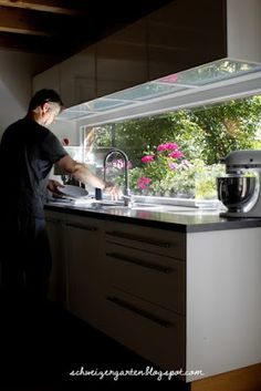 Pelargonium Kardinal, magenta, dark pink, Kitchen Windows