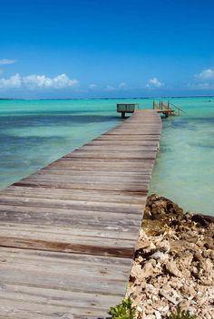 Bonaire| surf | Snorkel | dive |  Kitesurfing| Rent villa sabalpalm www.bonairesabalpalm.com