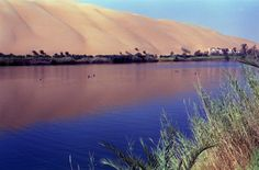 Gaberoun is an oasis in the presence of a large lake.