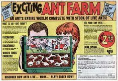 my mom was always excited by how the ants were always able to escape, like they were all mini Steve McQueens in a tiny Stalag 17.