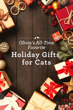 If you have a cat or cat parent on your holiday shopping list, Olivia and I want to help make your shopping easier. So here is Olivia's Favorite Holiday Gifts for Cats! Gifts For Pet Lovers, Cat Gifts, Cat Lovers, Healing Words, Healing Quotes, Cat Symptoms, Sick Cat, Deep Quotes About Love, Catnip Toys