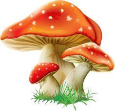 Cute red/white polka-dot mushrooms … | Pinteres…