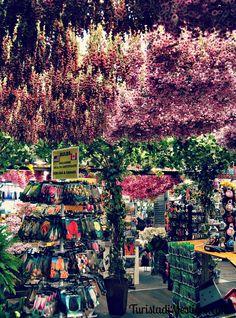 Amsterdam, mercato dei fiori. http://www.turistadimestiere.com/2010/05/diario-di-viaggio-amsterdam-non-solo-coffee.html