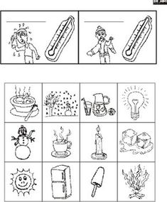 1000+ images about Science on Pinterest | Frog Life Cycles, Life ...