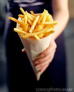 French Fry critic....