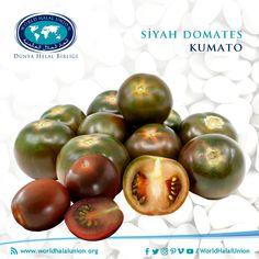 """Son yapılan araştırmalara göre domatesin en geniş üretimini Çin, ABD ve Türkiye gerçekleştiriyor. Türkiye'ye Osmanlı İmaparatorluğu zamanında Trakya'dan ve Güney'den girdiği sanılan domatesin türlerinin karıştırılması ile """"siyah domates"""" ya da """"kumato"""" üretilmeye başlandı. Genetik olarak değiştirilmeyen ve sadece türlerinin birleştirilmesi ile oluşturulan """"Akdeniz domatesi"""" olarak bilinen siyah domates ilk kez İspanya'da üretildi. Kumato, normal domateslerden daha fazla vitamin ve… Vegetables, Food, Essen, Vegetable Recipes, Meals, Yemek, Veggies, Eten"""