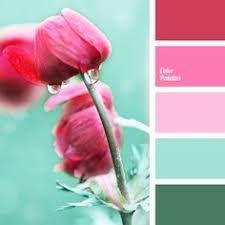 Resultado de imagem para colors pallets