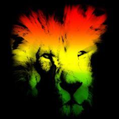 Bob Marley Afro Lion Reggae Generation Rasta Design Grafika T Shirt Wallpaper
