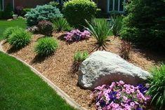front yard landscape with gold mulch #landscapefrontyardmulch