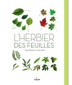 L'herbier des feuilles : un bel herbier bien documenté et maniable