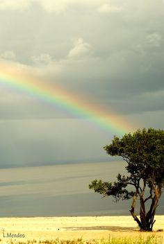 Praia do Tupé, Manaus, Amazonas, Brasil.