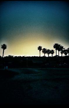 Sunset cliff's ♥ Ocean Beach, CA