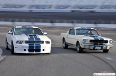 Shelby GT-350 Generations