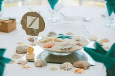 Seashell Table Numbers with Beach Themed Holder
