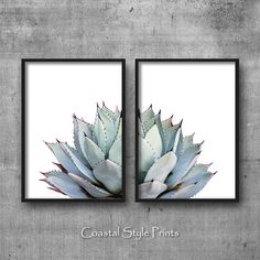 Grey Cactus Set Of 2 Prints #152b Printable Art offered in a choice of sizes below.  This is an INSTANT DOWNLOAD of a set of 2 matching prints of a strikingly beautiful Spiky Agave Cactus featuring soft pastels and deep purple tips that I photographed in a garden I was exploring with my girls. I love the subtle imprint on each leaf permanently left behind from the unfurling outer leaf, and the contrasting shades of purple tips against soft pastel grey blues and mint greens is just…