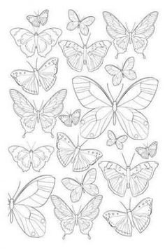 garden drawing Jardim Encantado - Antistress Coloring Book n .-- Enchanted Garden Antistress Coloring Book n color Colouring Pages, Adult Coloring Pages, Coloring Books, Butterfly Coloring Page, Butterfly Drawing, Drawings Of Butterflies, Butterfly Mandala Tattoo, Butterfly Painting, Paper Butterflies