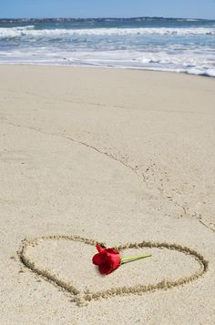 beach love with heart in the sand and rose by the surf I Love Heart, Happy Heart, Heart In Nature, Single Rose, Heart Images, Red Roses, Beautiful Flowers, Beautiful Pictures, Valentines