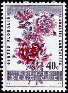 1960 DeVos Belgium Indian Azalea Van Noten