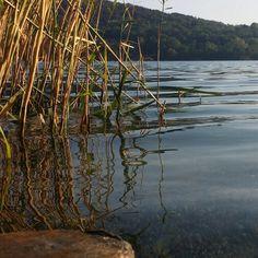 Il lago di Monate uno dei miei #luoghidelcuore ☺ #monate #lake #varese