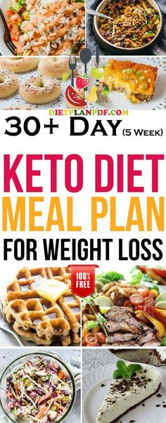keto recipes for beginners plus keto diet meal plan for beginners! keto recipes for beginners plus keto diet meal plan for beg. Keto Diet For Beginners, Recipes For Beginners, Keto Diet Plan, Diet Meal Plans, Free Keto Meal Plan, Paleo Diet, Keto Desserts, Diet Tips, Diet Recipes