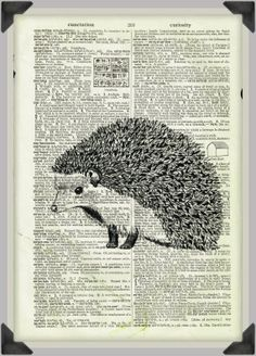 Hedgehog drawing on vintage dictionary paper by TheFoxAndFinch, $18.00