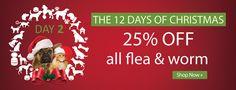 Bargain - 25% OFF - All Flea & Worm @ Pet