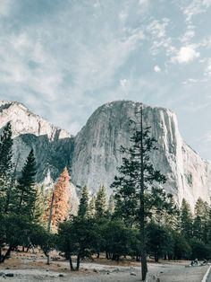 Yosemite National Park, Lumix with Olympus Such a beautiful place! Best Photography Blogs, Photography Gear, Amazing Photography, Landscape Photography, Bad Photos, Cool Photos, Yosemite National Park, National Parks, Liverpool Cathedral