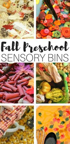Dig into these simple but beautiful Preschool fall sensory bins filled with the rich jewel tones of Fall! Explore textures and vibrant colors through play! Fall Sensory Bin, Sensory Tubs, Sensory Activities, Sensory Play, Infant Activities, Autumn Activities For Kids, Fall Preschool, Preschool Math, Preschool Ideas